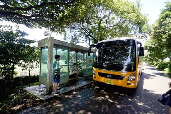 Getting around Jeju Island in South Korea - Public