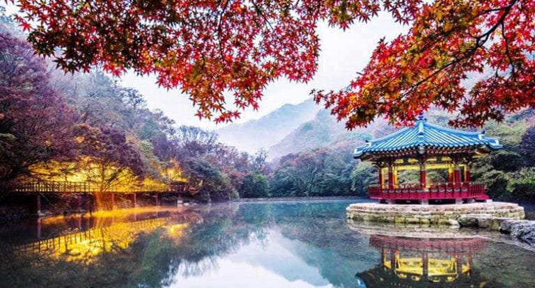 Travel Review & Tips: Naejangsan National Park 1 Day Fall Foliage Trip