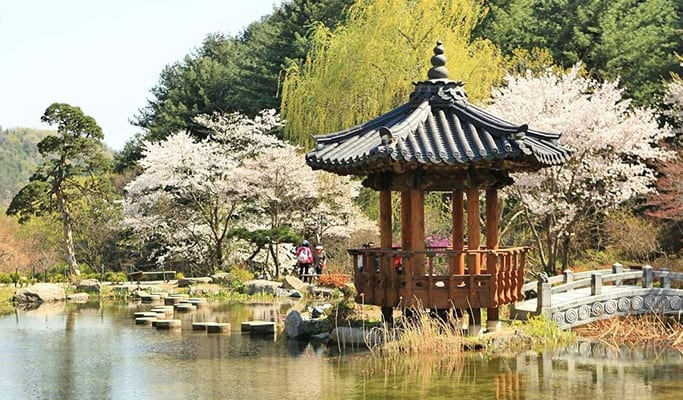9 Best Festivals in May 2019 | South Korea Festivals Guide – Trazy Blog