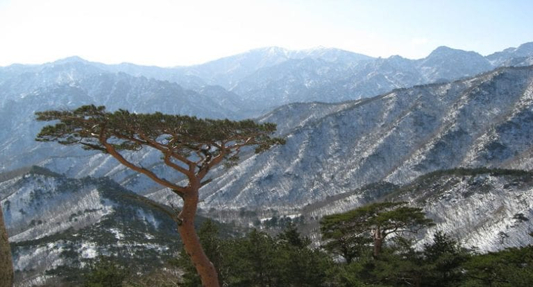 5 Most Stunning National Parks in South Korea