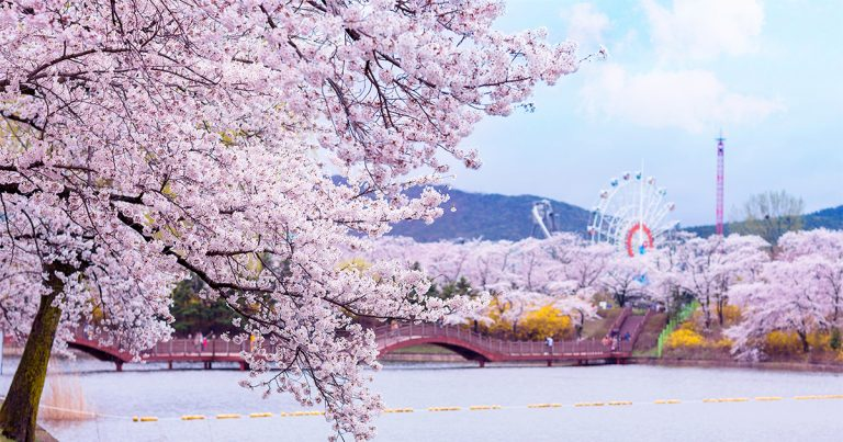 8 Best Places for a Spring Day Trip from Seoul 2021