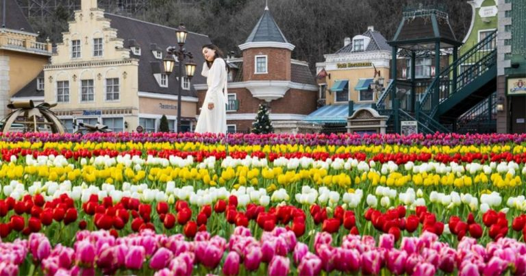 Everland Tulip Festival & Spring Attractions 2021