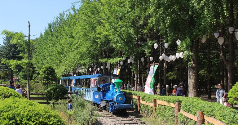 What's the Best Way to Go to Nami Island from Seoul?