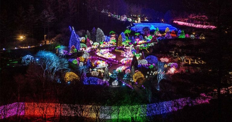 All About the Garden of Morning Calm Light Festival 2020-21