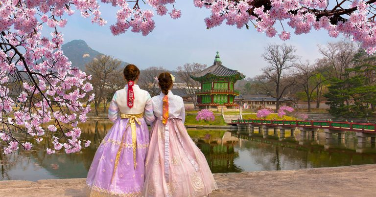 Spring is in the Air: All About Spring Flowers in Korea