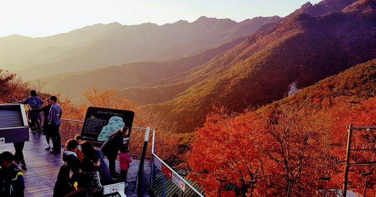Top 5 Fall Foliage Trails in South Korea You Must Visit